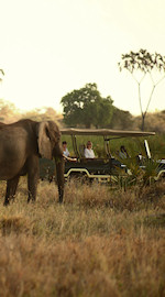 safari parken Kenia