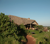 Rhotia Valley Lodge
