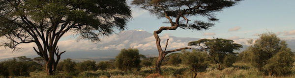 Amboseli nationaal park - Mount Klimanjaro